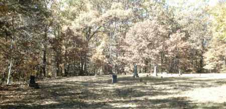 *EAGLE GAP CEMETERY OVERVIEW,  - Madison County, Arkansas |  *EAGLE GAP CEMETERY OVERVIEW - Arkansas Gravestone Photos