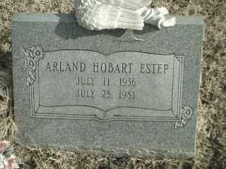 ESTEP, ARLAND HOBART - Madison County, Arkansas | ARLAND HOBART ESTEP - Arkansas Gravestone Photos