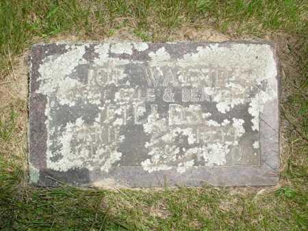 FIELDS, JOE WAYNE - Madison County, Arkansas   JOE WAYNE FIELDS - Arkansas Gravestone Photos