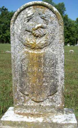 FIELDS, LEWALLEN A. - Madison County, Arkansas | LEWALLEN A. FIELDS - Arkansas Gravestone Photos