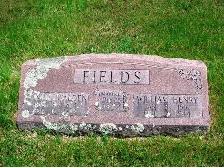 "FIELDS, NANCY MARY ""NANNIE"" - Madison County, Arkansas 