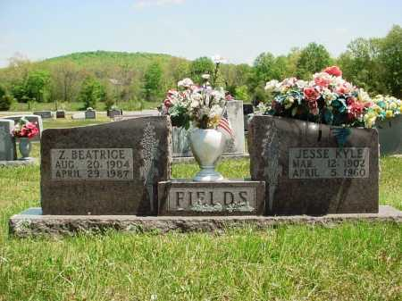"FIELDING FIELDS, ZELLA BEATRICE ""BEA"" - Madison County, Arkansas 