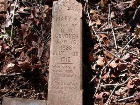 HAM GOUCHER, MARY ANN - Madison County, Arkansas | MARY ANN HAM GOUCHER - Arkansas Gravestone Photos
