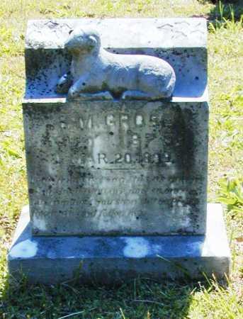 GROSE, F. M. - Madison County, Arkansas   F. M. GROSE - Arkansas Gravestone Photos