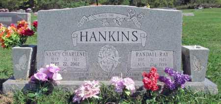 HANKINS HANKINS, NANCY CHARLENE - Madison County, Arkansas | NANCY CHARLENE HANKINS HANKINS - Arkansas Gravestone Photos