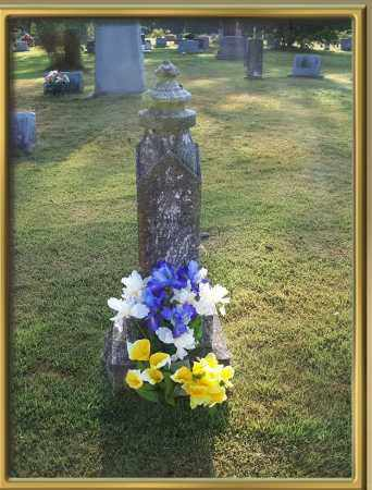 HOLLINGSWORTH, GEORGE - Madison County, Arkansas | GEORGE HOLLINGSWORTH - Arkansas Gravestone Photos