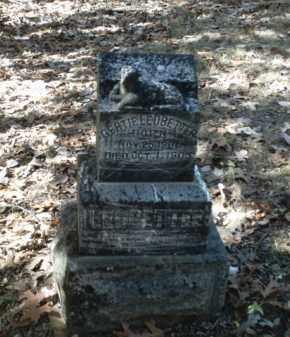 LEDBETTER, GERTIE - Madison County, Arkansas   GERTIE LEDBETTER - Arkansas Gravestone Photos