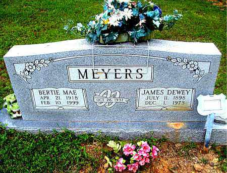 MEYERS, JAMES DEWEY - Madison County, Arkansas   JAMES DEWEY MEYERS - Arkansas Gravestone Photos