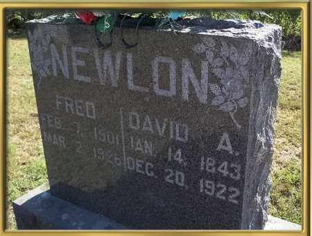 NEWLON, FRED - Madison County, Arkansas | FRED NEWLON - Arkansas Gravestone Photos
