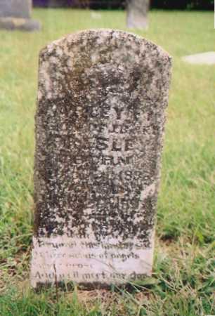 PRESLEY, HARVEY? - Madison County, Arkansas | HARVEY? PRESLEY - Arkansas Gravestone Photos