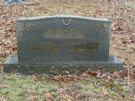 REED, PETER L. - Madison County, Arkansas | PETER L. REED - Arkansas Gravestone Photos
