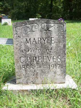 REEVES, MARY ELIZABETH - Madison County, Arkansas | MARY ELIZABETH REEVES - Arkansas Gravestone Photos
