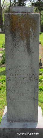 SKAGGS, GIDEON - Madison County, Arkansas   GIDEON SKAGGS - Arkansas Gravestone Photos
