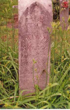 DOUGHERTY SKAGGS, POLLY ANN - Madison County, Arkansas | POLLY ANN DOUGHERTY SKAGGS - Arkansas Gravestone Photos