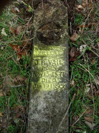 VAIL, RILLER E. - Madison County, Arkansas   RILLER E. VAIL - Arkansas Gravestone Photos
