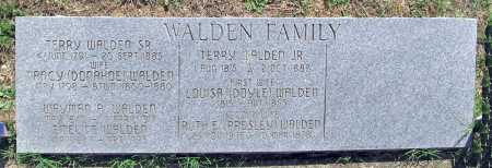 WALDEN, WAYMAN A. - Madison County, Arkansas | WAYMAN A. WALDEN - Arkansas Gravestone Photos