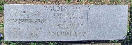 WALDEN, LOUISA - Madison County, Arkansas | LOUISA WALDEN - Arkansas Gravestone Photos