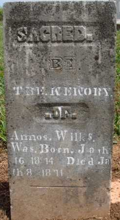 WILKS, AMOS - Madison County, Arkansas | AMOS WILKS - Arkansas Gravestone Photos