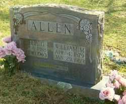 ALLEN, WILLIAM M. - Marion County, Arkansas | WILLIAM M. ALLEN - Arkansas Gravestone Photos