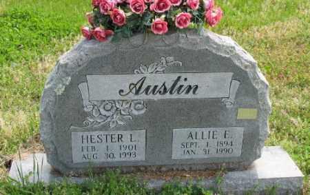 AUSTIN, HESTER L. - Marion County, Arkansas | HESTER L. AUSTIN - Arkansas Gravestone Photos