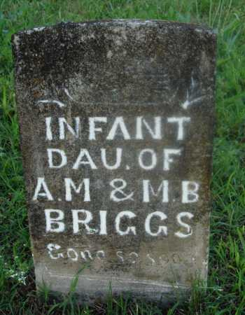 BRIGGS, INFANT DAUGHTER - Marion County, Arkansas | INFANT DAUGHTER BRIGGS - Arkansas Gravestone Photos