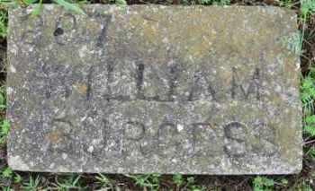 BURGESS, WILLIAM H. - Marion County, Arkansas | WILLIAM H. BURGESS - Arkansas Gravestone Photos
