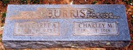 NANNY BURRIS, MARGARET ANGELINE - Marion County, Arkansas | MARGARET ANGELINE NANNY BURRIS - Arkansas Gravestone Photos