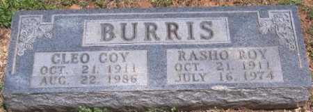 BURRIS, RASHO ROY - Marion County, Arkansas | RASHO ROY BURRIS - Arkansas Gravestone Photos