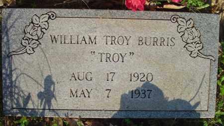 BURRIS, WILLIAM TROY - Marion County, Arkansas | WILLIAM TROY BURRIS - Arkansas Gravestone Photos