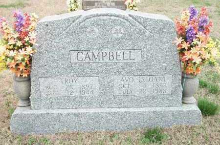 CAMPBELL, TROY - Marion County, Arkansas | TROY CAMPBELL - Arkansas Gravestone Photos