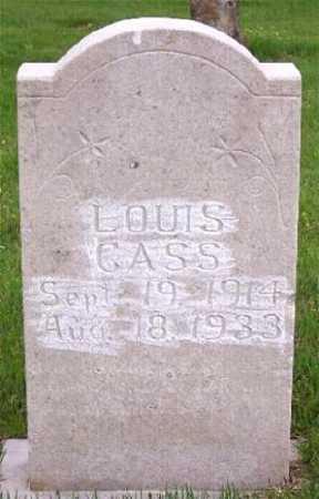 CASS, LOUIS - Marion County, Arkansas | LOUIS CASS - Arkansas Gravestone Photos