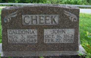 CHEEK, CALDONIA - Marion County, Arkansas | CALDONIA CHEEK - Arkansas Gravestone Photos