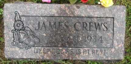 CREWS, JAMES W. - Marion County, Arkansas | JAMES W. CREWS - Arkansas Gravestone Photos