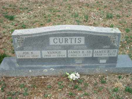 CURTIS, VANNIE - Marion County, Arkansas | VANNIE CURTIS - Arkansas Gravestone Photos