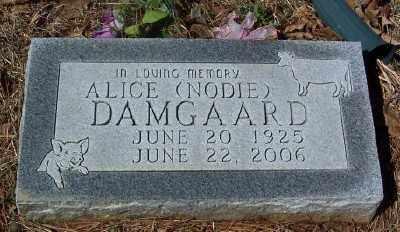 DAMGAARD, ALICE - Marion County, Arkansas | ALICE DAMGAARD - Arkansas Gravestone Photos
