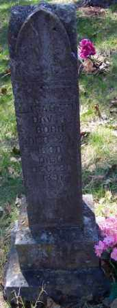 HARRIS DAVIS, ELISBETH - Marion County, Arkansas | ELISBETH HARRIS DAVIS - Arkansas Gravestone Photos