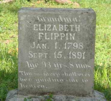 BAUGH FLIPPIN, ELIZABETH - Marion County, Arkansas   ELIZABETH BAUGH FLIPPIN - Arkansas Gravestone Photos