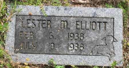 ELLIOTT, LESTER M. - Marion County, Arkansas | LESTER M. ELLIOTT - Arkansas Gravestone Photos