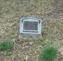 ELLISON, SALLY E. - Marion County, Arkansas | SALLY E. ELLISON - Arkansas Gravestone Photos