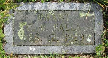 FALLS, C. B. - Marion County, Arkansas | C. B. FALLS - Arkansas Gravestone Photos
