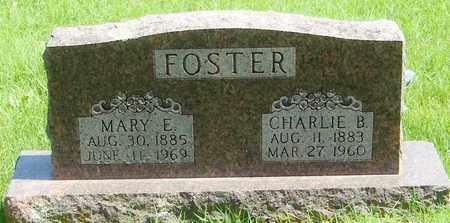 FOSTER, MARY E - Marion County, Arkansas | MARY E FOSTER - Arkansas Gravestone Photos