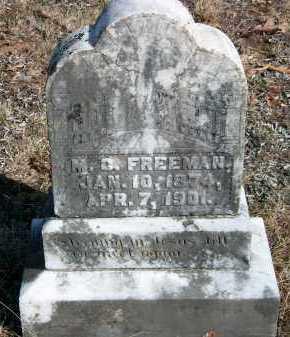 FREEMAN, M  C - Marion County, Arkansas | M  C FREEMAN - Arkansas Gravestone Photos