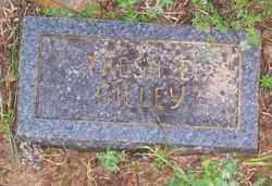 GILLEY, TRESSA E. - Marion County, Arkansas   TRESSA E. GILLEY - Arkansas Gravestone Photos