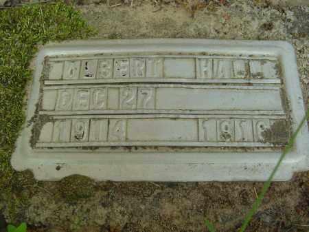 HALL, ALBERT - Marion County, Arkansas | ALBERT HALL - Arkansas Gravestone Photos