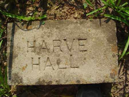 HALL, HARVE - Marion County, Arkansas | HARVE HALL - Arkansas Gravestone Photos