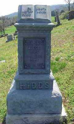 HIGGS, JOEL - Marion County, Arkansas | JOEL HIGGS - Arkansas Gravestone Photos
