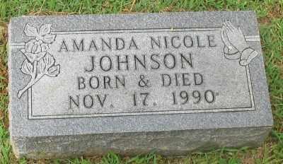 JOHNSON, AMANDA NICOLE - Marion County, Arkansas | AMANDA NICOLE JOHNSON - Arkansas Gravestone Photos