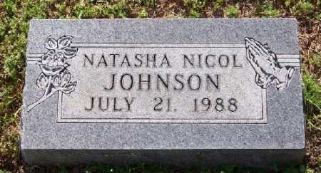 JOHNSON, NATASHA NICOL - Marion County, Arkansas | NATASHA NICOL JOHNSON - Arkansas Gravestone Photos