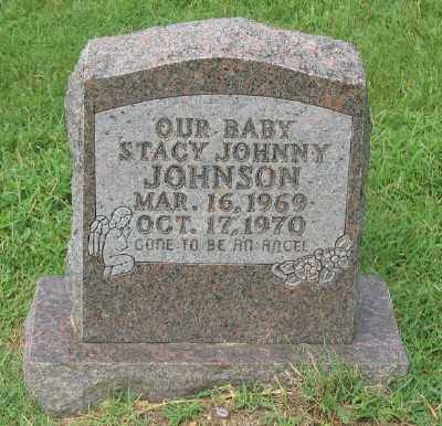 JOHNSON, STACY JOHNNY - Marion County, Arkansas | STACY JOHNNY JOHNSON - Arkansas Gravestone Photos