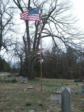 *LOCUST CEMETERY FLAG,  - Marion County, Arkansas |  *LOCUST CEMETERY FLAG - Arkansas Gravestone Photos